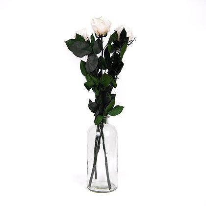 Vase de 3 Roses Eternelles sur tige - Blanc Pur