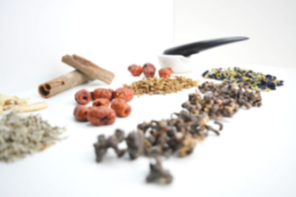 Health Wise Chinese Medicine Herbal Therapy