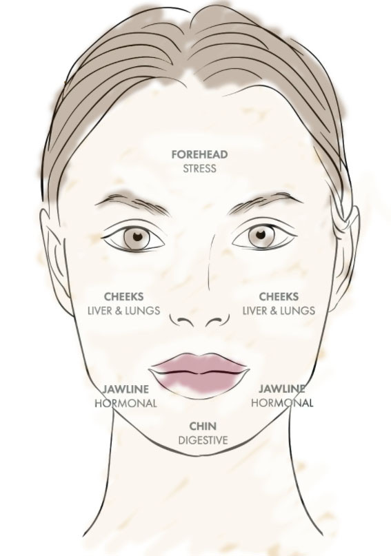 Health Wise Chinese Medicine Face Mapping