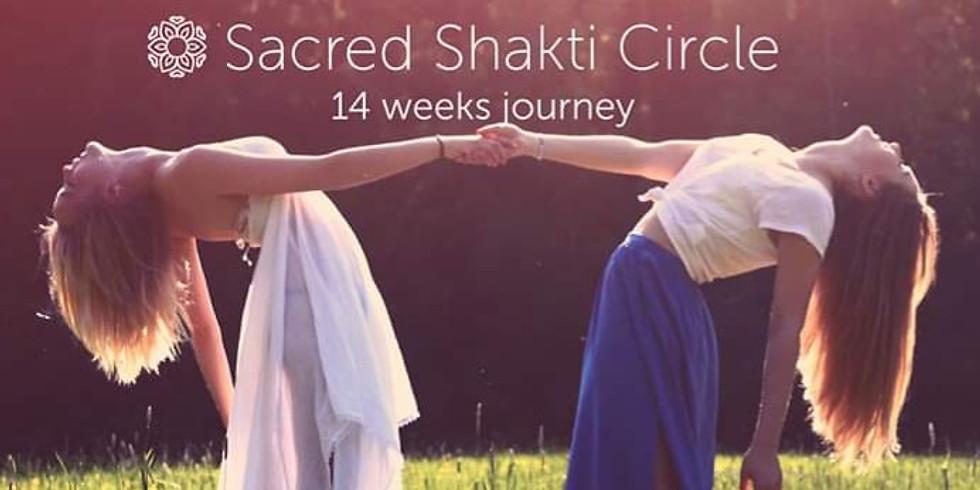 Sacred Shakti Circle - 14 ugers kvindeforløb