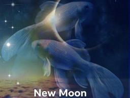 New Moon, Ending & New Beginnings