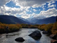 Rocky Mountain National Park- Elk & Leaf Season