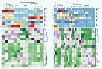 Heatmap of sample abundance and phenotypic analysis