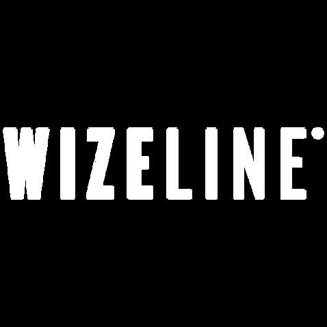 wizeline.png