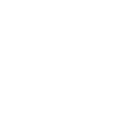 tinypulse.png