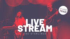 LiveStream_Starlings_fb.jpg
