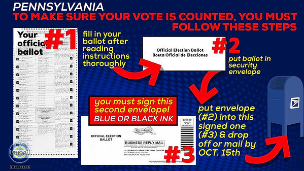Mail in ballot rules.jpg