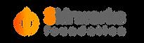 skinworks logo-02.png