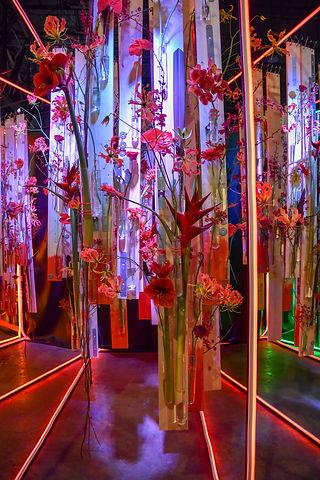 PHL Flower Show