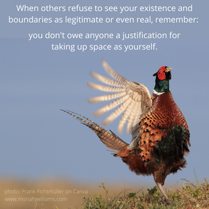 common pheasant don't owe anyone a justi