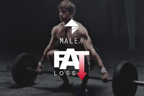 Male Fat Loss