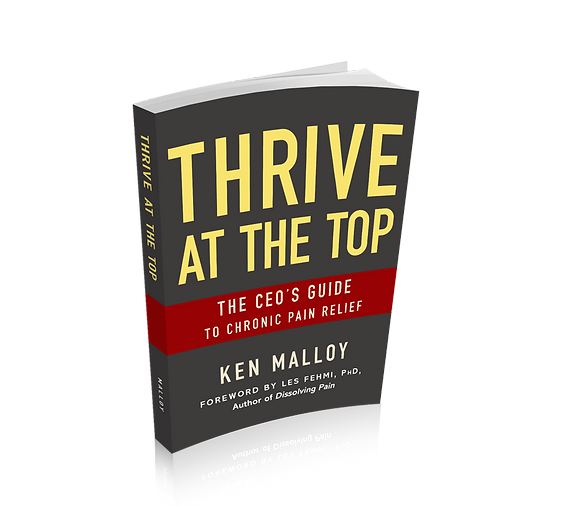 Thrive At The Top, by Ken Malloy