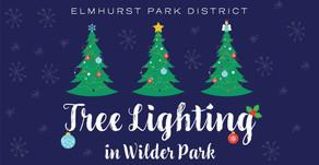TREE LIGHTING   Wilder Park Elmhurst