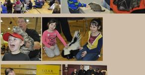 WILD FEST | Wolf,  Alligator,  Python, Bats, Lynx, Skunks, Sloth,  Armadillos & More in Bolingbrook