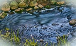Blødt vand ved Tadre Mølle