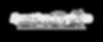 sportsunday logo 2018WHITE.png