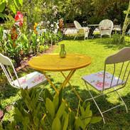 garden COLORenhanced reduced cropped.jpg