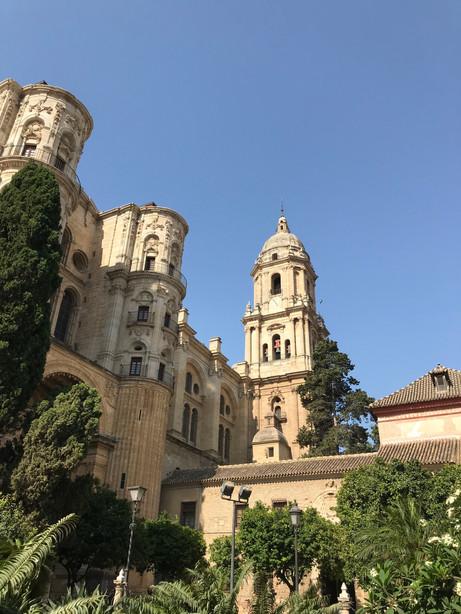 Malaga culture