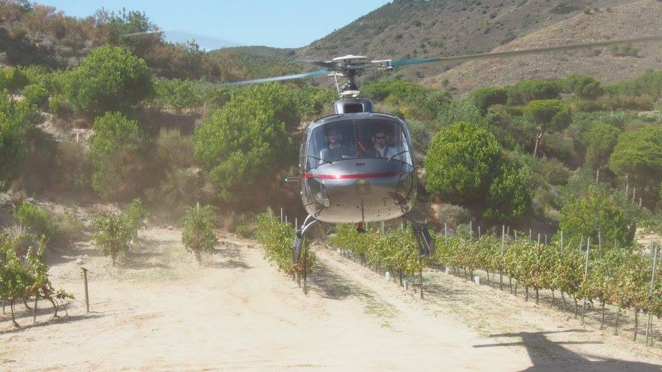 Helicopter Vineyard Experience