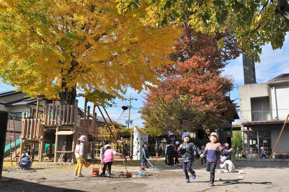 幼稚園の園庭(秋2)