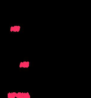 Website - NP-DNA vs RNA.png