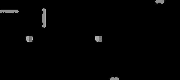 Izgu Lab_website_Home_OrgChem_Ribozyme.p