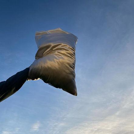 SILKCASE White silk pillowcase