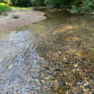 m-brady-creek.jpg