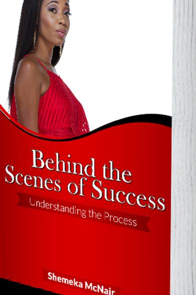 Behind the Scenes Success