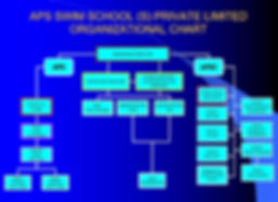 APS Org Chart.jpg