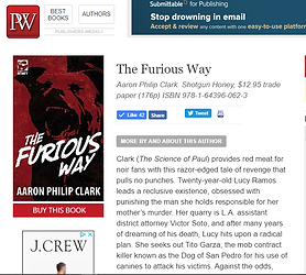 Furious Way Review.PNG
