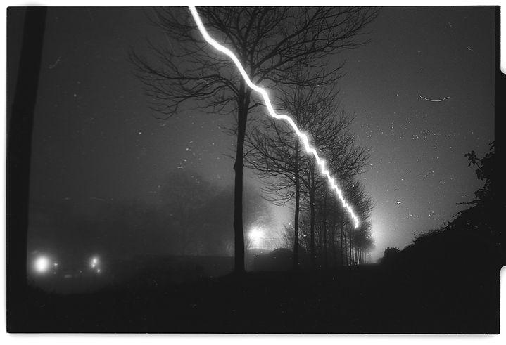 Brouillard---bord-de-rive-(35).jpg