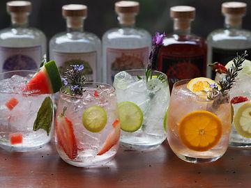Gin and Tonics.jpg