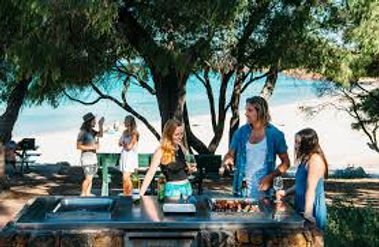 beach picnic from website.jpg