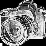 sjp.logo_edited.png