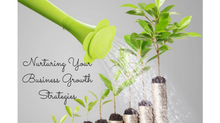 What's Your Plan? To Grow Your Business...