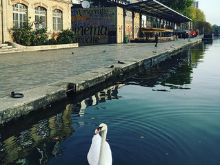La CREATIVE ATTITUDE embarque à bord des Canaux de Paris !
