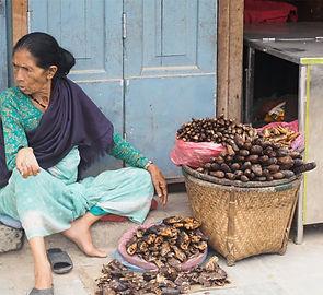 Nepal .jpg