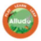 alludo-orange-badge.png