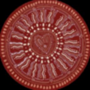 Cacao_Circle.tiff