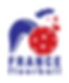 Fédération française de floorball