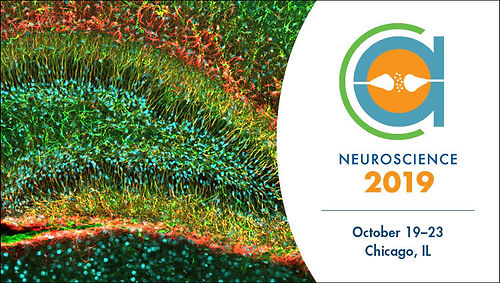 Lu lab' new discovery was selected as hot topic at Society for Neuroscience meeting, Chicago, 2019