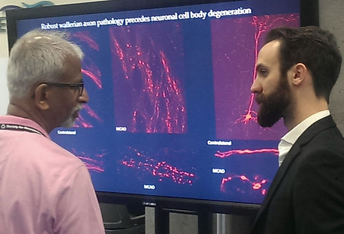 Dynamic presentation at Society for Neuroscience meeting