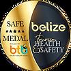 BTB-TGS-medal.png