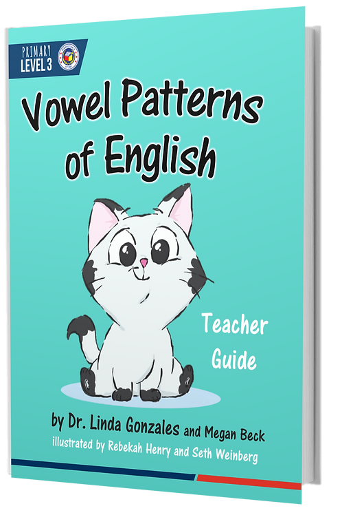 P3 Vowel Patterns of English | Teacher Textbook