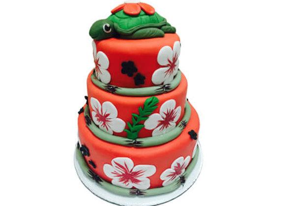 Kids Cake Turtle