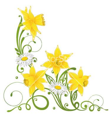 Daffodil  Day: