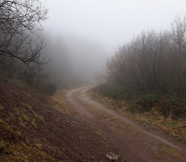 Foggy Mar day