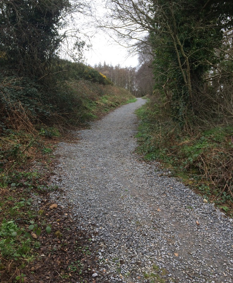 Link Path from car park to forest roads