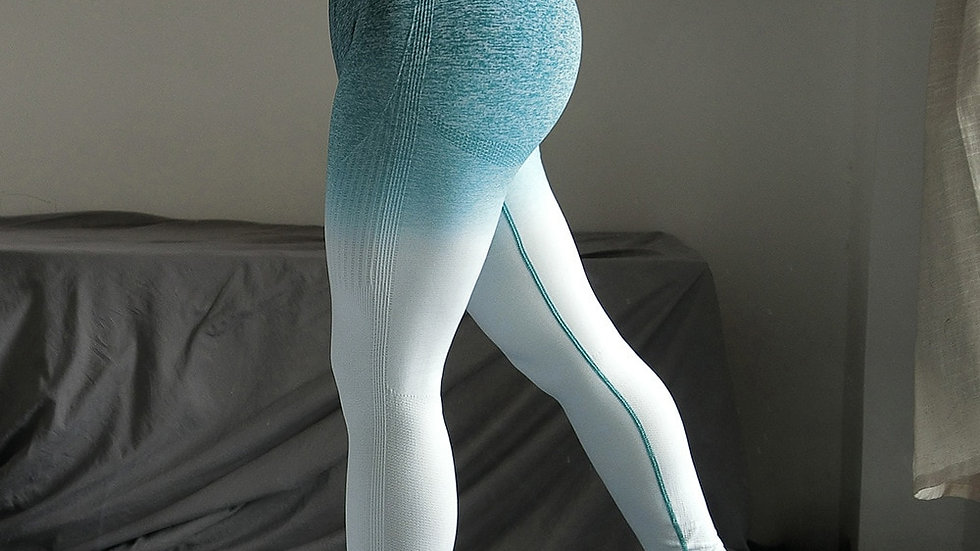 Gradient Color Energy Legging. Women